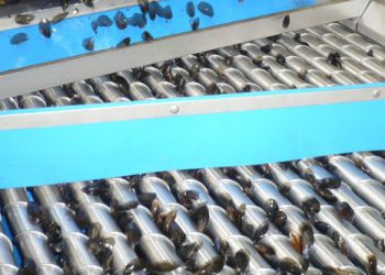 Calibreuse à rouleaux coniques