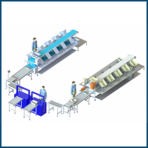 Packaging Chain with feeding in Manna